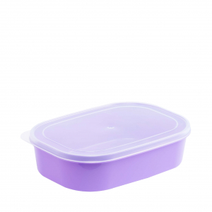 Food Container L1048