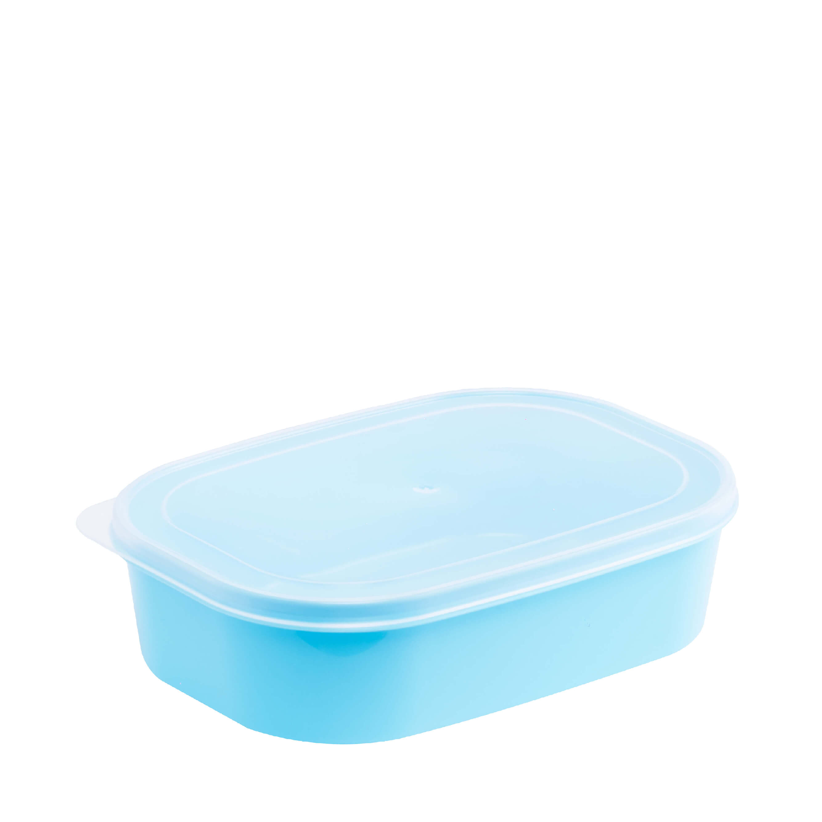 Foodpak Container L1050