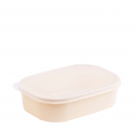 Foodpak Container L1053