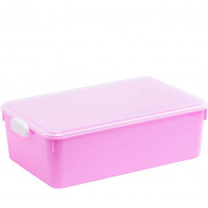 Rectangular Food Container L80519
