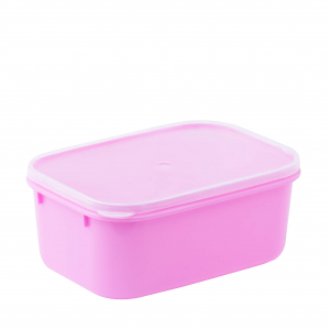 Rectangular Food Container L508-2