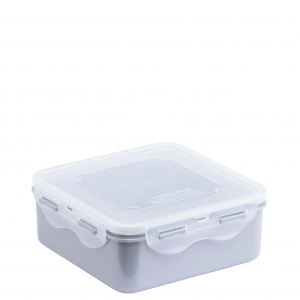 Food Container L935