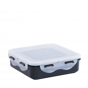 Food Container L608