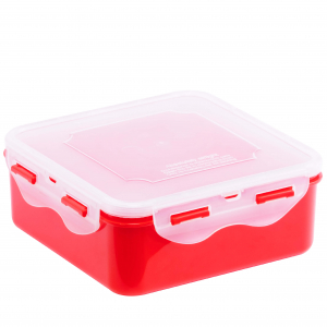 Food Container L609