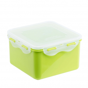 Food Container L610