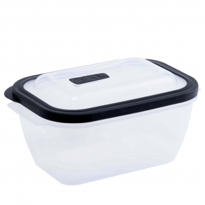 Food Container L647