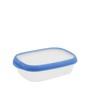 Food Container L616