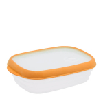 Food Container L618
